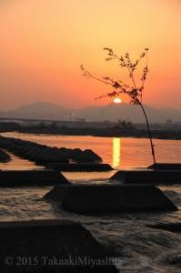 静岡 蓬莱橋付近2